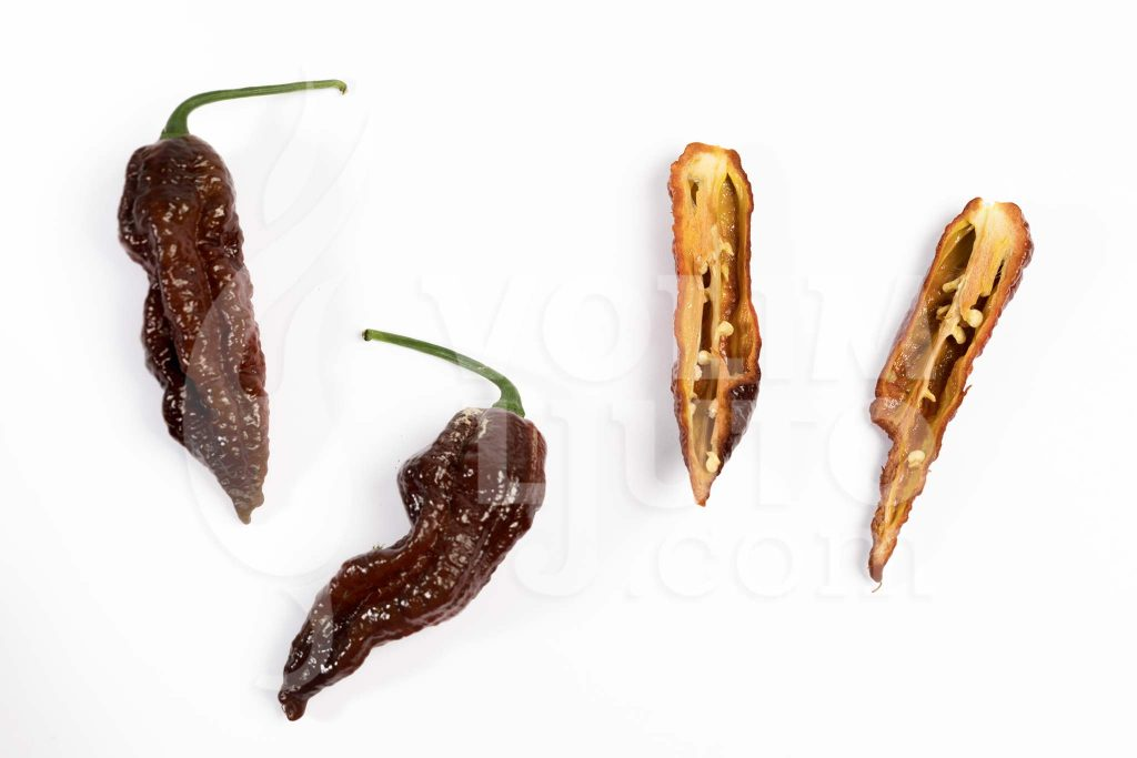 Bhut Jolokia Chocolate - Spicydays.com