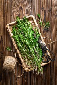 Top 10 mediteranskih začina koje trebate u svojoj kuhinji - 1. dio 1