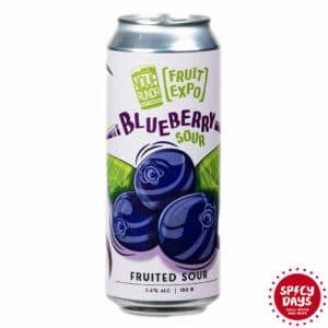 Nova Runda Blueberry Sour 0,50l